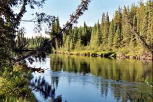 Big Salmon River Tour