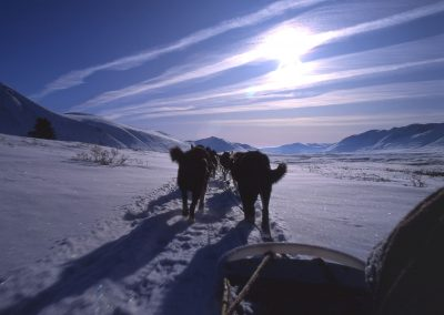 Dogsledding2