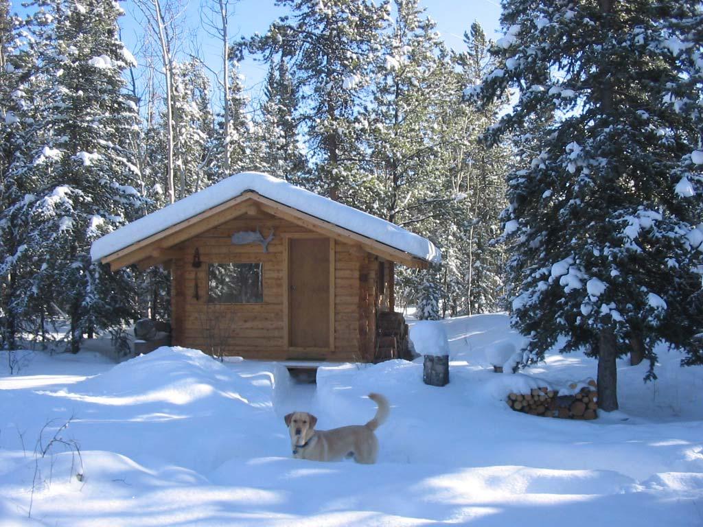 log cabin rental in the yukon at otter island or pilot mountain
