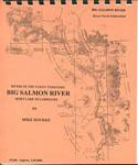 Big Salmon River Guide Book / River Descriptions