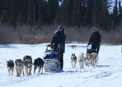dog-sledding-on-Fish-Lake