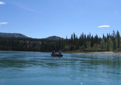 der Yukon unterhalb von Whitehorse